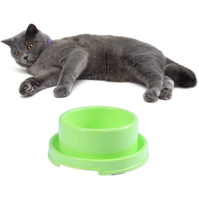 Tazón de Comida Anti-Hormiga para Gatos